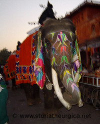 storia-index/jaipur-elephant-web.jpg